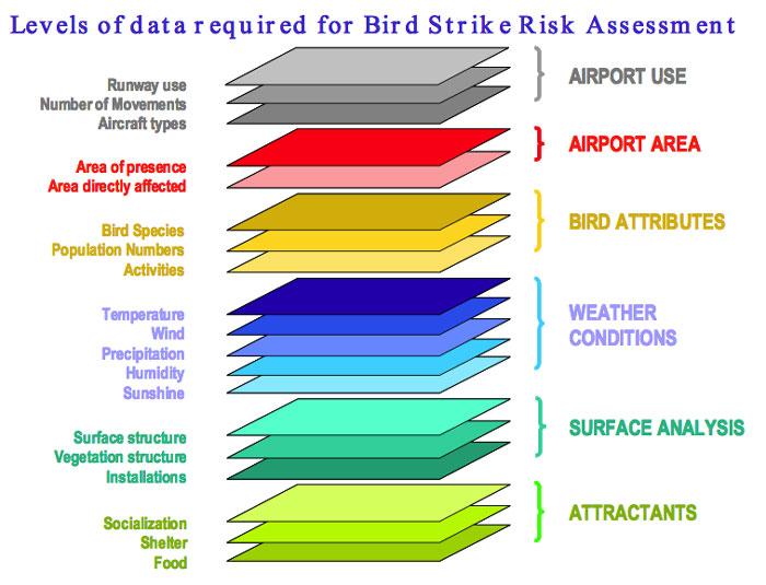 Bird Strike Risk Assessment chart